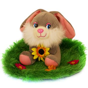 Bunny on the meadow