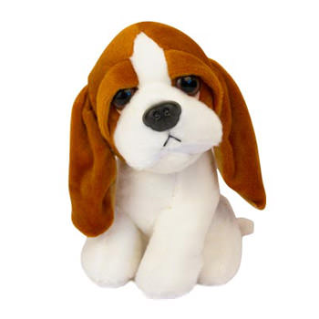 Little puppy  - buy in Ukraine