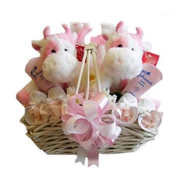 "Gift basket ""Gemini""  - buy in Ukraine"