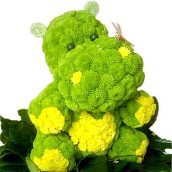 Бегемот из цветов  - купить в Украине