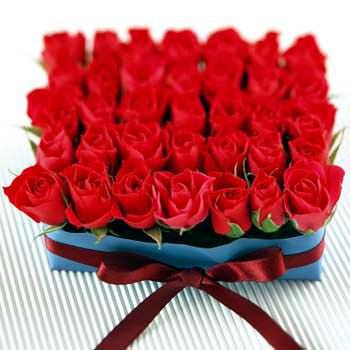 Цветочная клумба  - купить в Украине