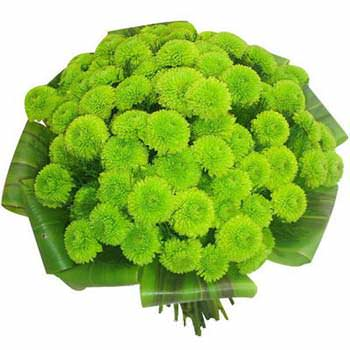 Весни цвітіння  - придбати в Україні