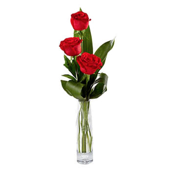 """Student's bouquet"" (3 red roses)  - buy in Ukraine"