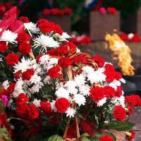 Цветы на 9 Мая: символический подарок ко Дню Победы