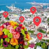 Цветочные магазины в Одессе с самым широким ассортиментом