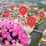 Квіткові магазини в Ужгороді проти онлайн-сервісу: переваги та недоліки