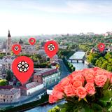 Цветочные магазины Харькова и их близость к метро
