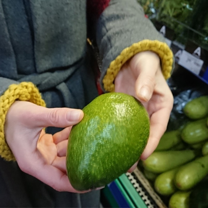 Покупаем плод авокадо в магазине