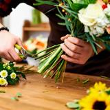 Как ухаживать за цветами. Инструкции и советы флористов