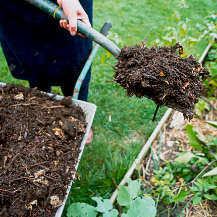 Мульчирование и рыхление почвы