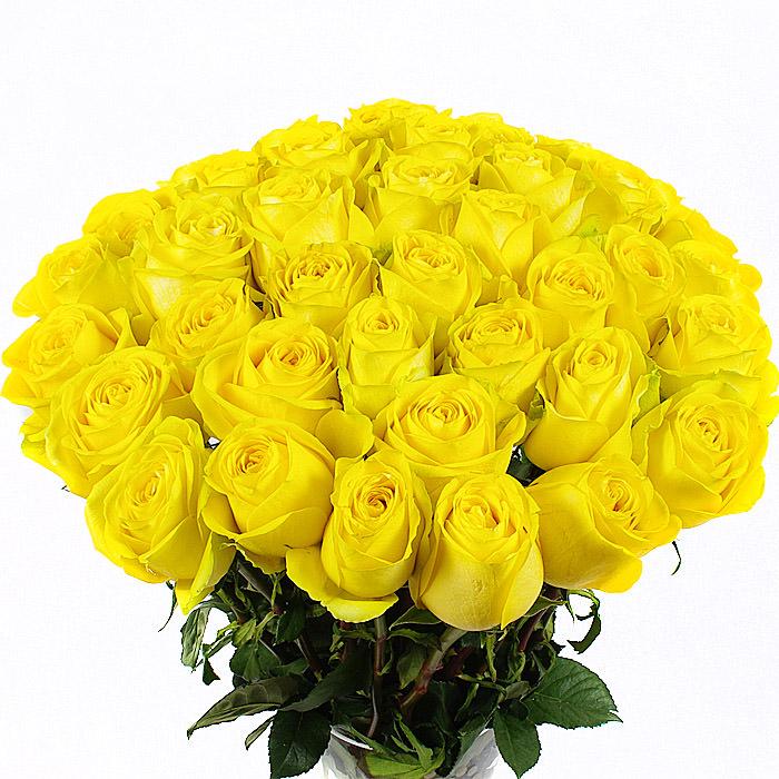 цветы и знаки