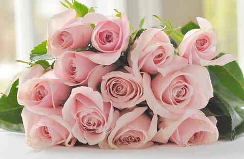 какие цветы дарить к 8 Марта