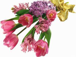Цветочные композиции для свадьбы