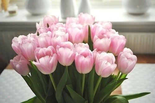 как правильно выбрать цветы девушке Близнецу