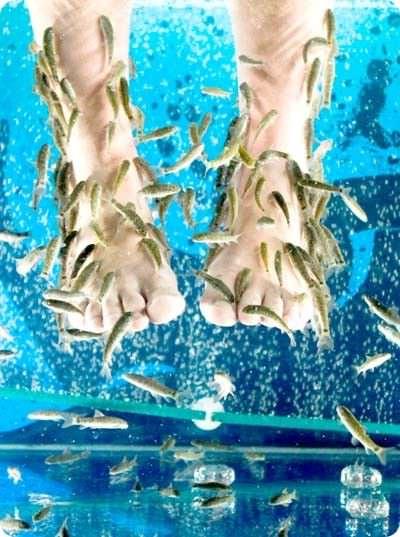 массаж рыбками в подарок на 14 февраля
