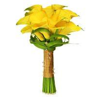 цветы мира желтые каллы