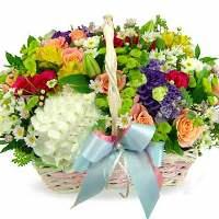 цветы мира гортензия в корзине