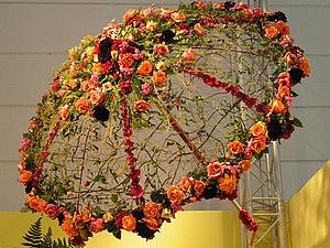 зонт из цвветов