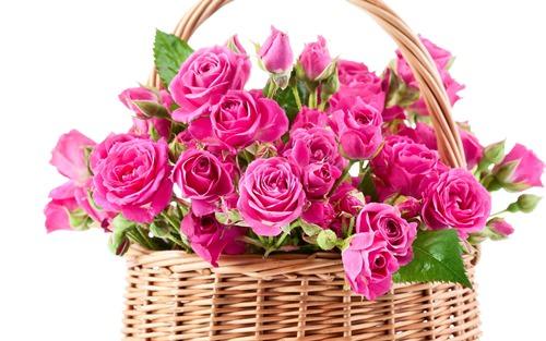 букет цветов на концерт