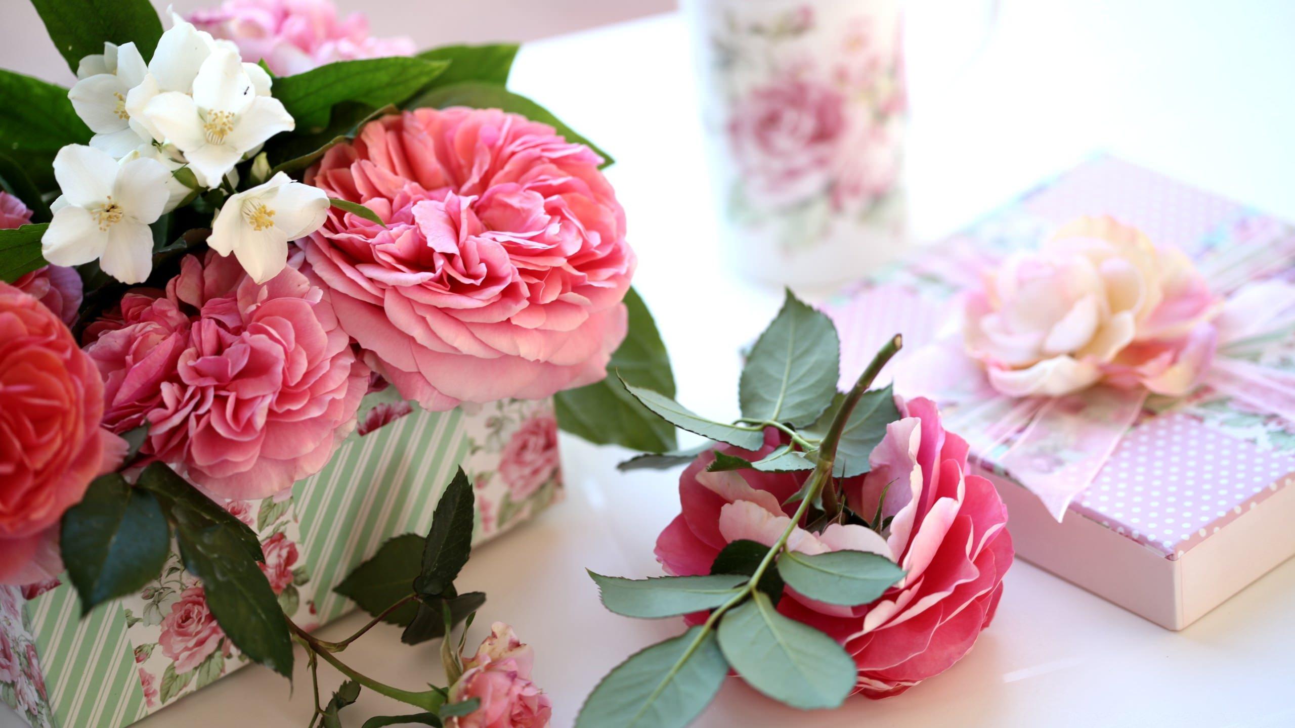 Розы в Германии