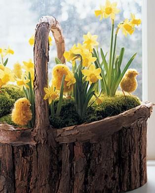 весенние цветы на Пасху