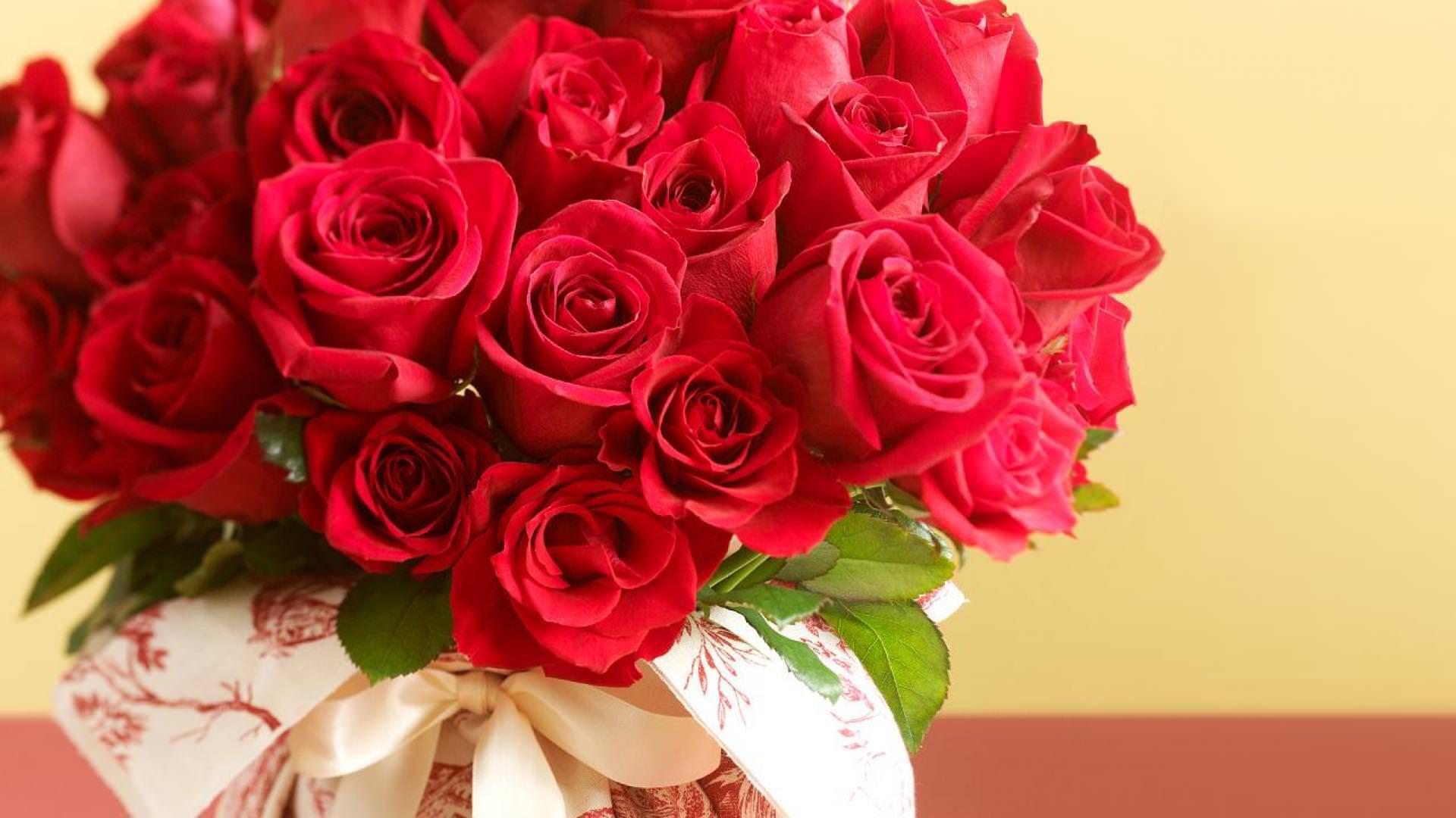 красивый букет красных роз