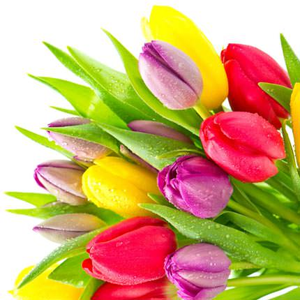 "Basket ""101 bright tulips"" - order with delivery"