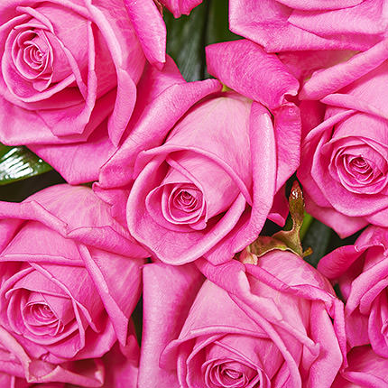 "Bouquet of roses ""Be with you"" - order with delivery"