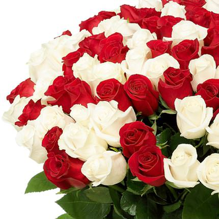 101 red and white rose - order with delivery