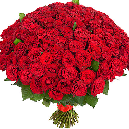 151 red roses - delivery in Ukraine