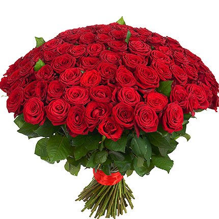 151 red roses - order with delivery