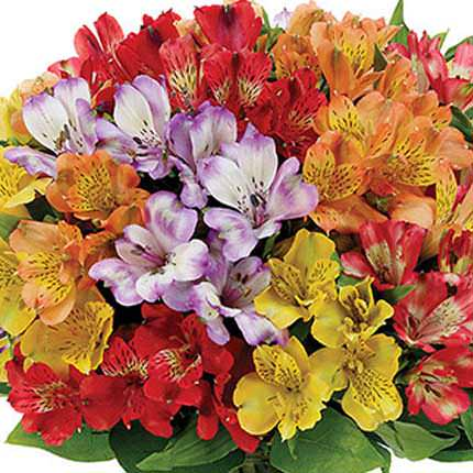 "Bouquet ""Fairytale for Two"" - delivery in Ukraine"
