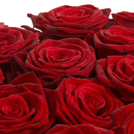 251 red roses - delivery in Ukraine