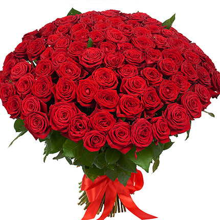 101 красная роза с мишкой - доставка по Украине