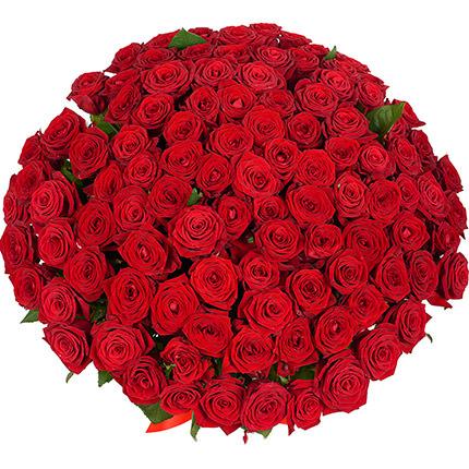 101 красная роза с мишкой - заказать с доставкой