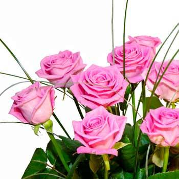 11 розовых роз - доставка по Украине