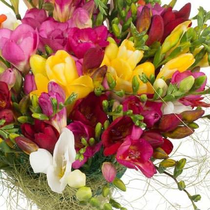 25 разноцветных фрезий - доставка по Украине