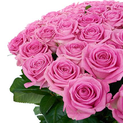 101 pink roses - order with delivery
