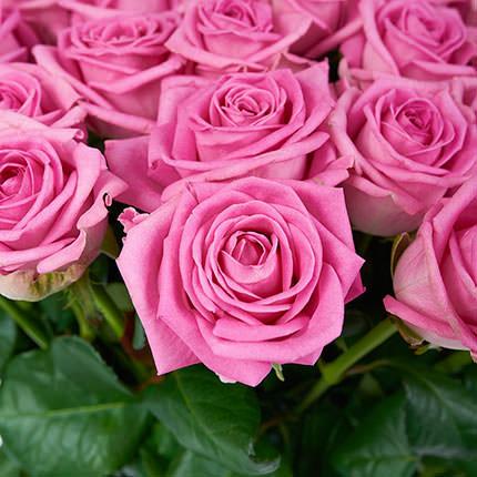 51 рожева троянда - замовити з доставкою