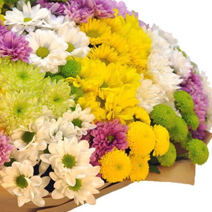 101 multicolored chrysanthemums - delivery in Ukraine