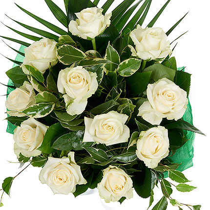 11 white roses - order with delivery