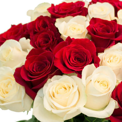 25 red and white roses - order with delivery