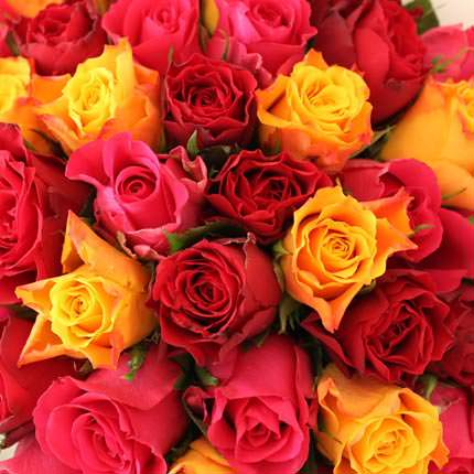 35 multicolored roses - order with delivery