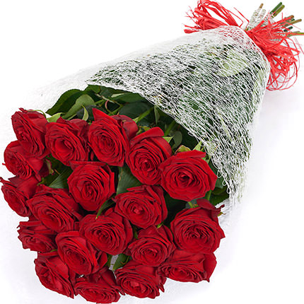 19  red Roses - order with delivery
