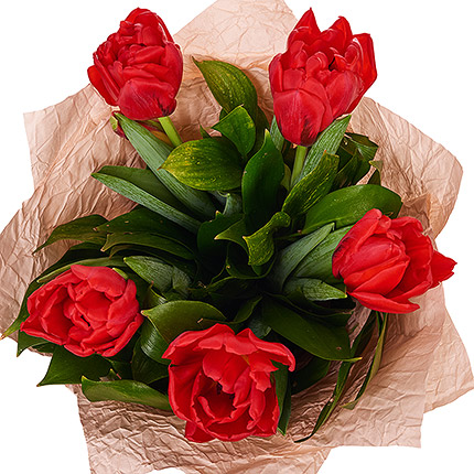 5 red tulips - order with delivery