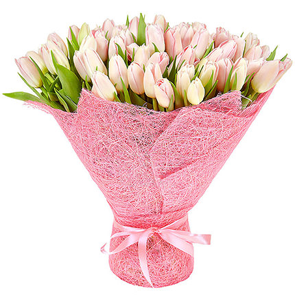 101 pink tulips - delivery in Ukraine