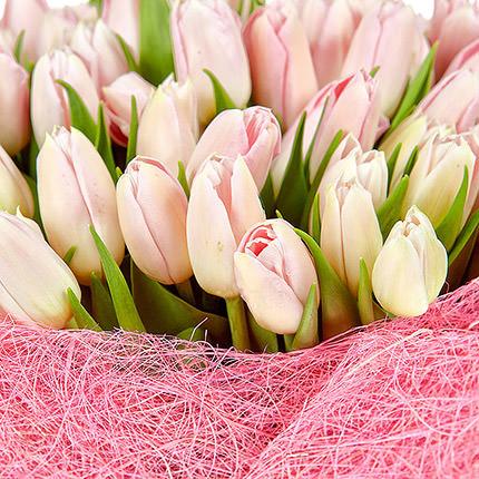 101 розовый тюльпан - заказать с доставкой