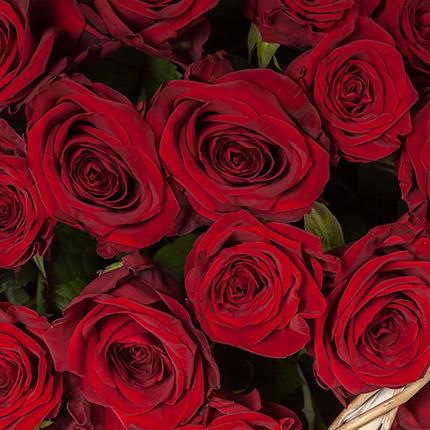 """Basket """"51 scarlet roses"""" - delivery in Ukraine"""