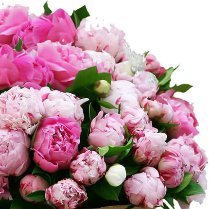 51 multicolored peonies - delivery in Ukraine
