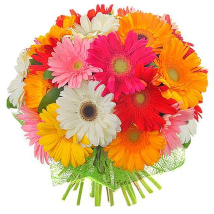 Mix of Gerberas (by an item) - order with delivery